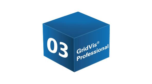 GridVis® Professional
